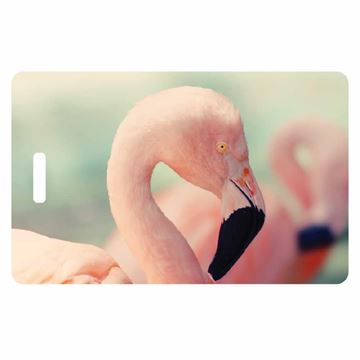 Picture of Flamingos Luggage Tag