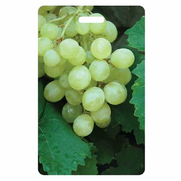 Picture of Grapes Identty Safe Luggage Tag