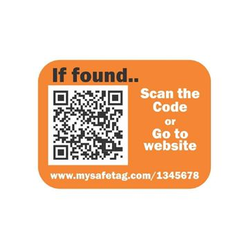 Picture of Orange Identity Safe Sticker Tags