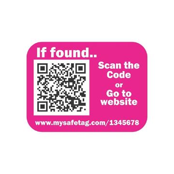 Picture of Pink Identity Safe Sticker Tags