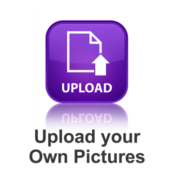 Picture of Upload your Own Pictures Luggage Tag